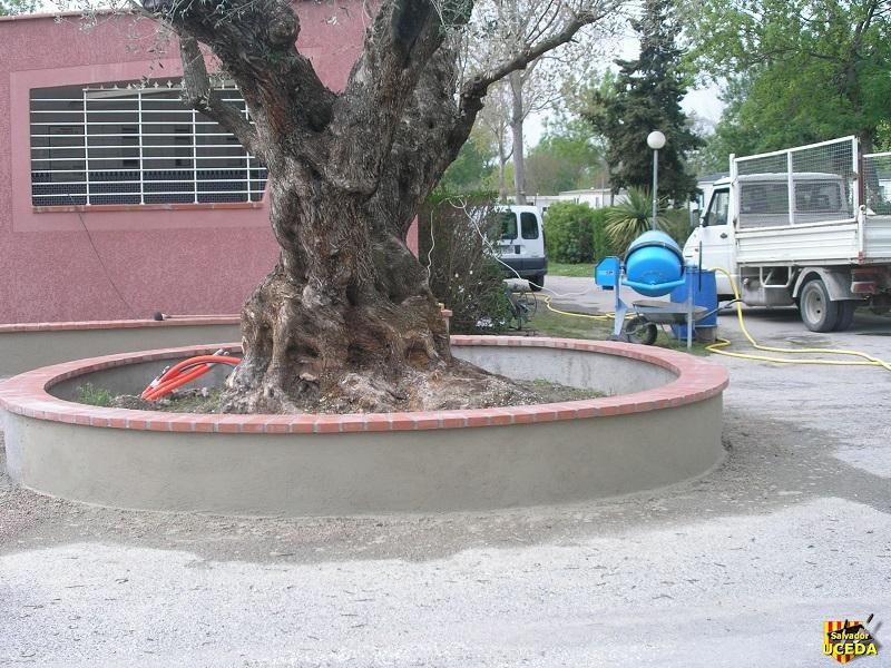 Jardinière circulaire autour d'un arbre